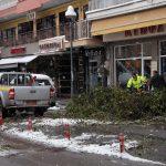 Πτώση δέντρου επί της οδού Ειρήνης έναντι της Αστικής Σχολής Κατερίνης
